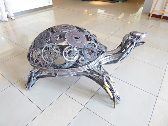 Hennessy Park Hotel : Wildlife in the lobby