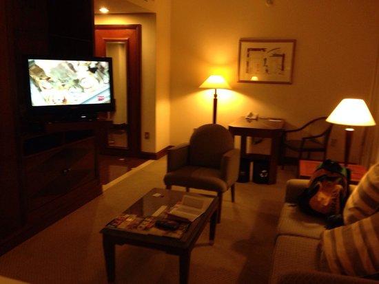 Sheraton Sao Paulo WTC Hotel: Room 1317