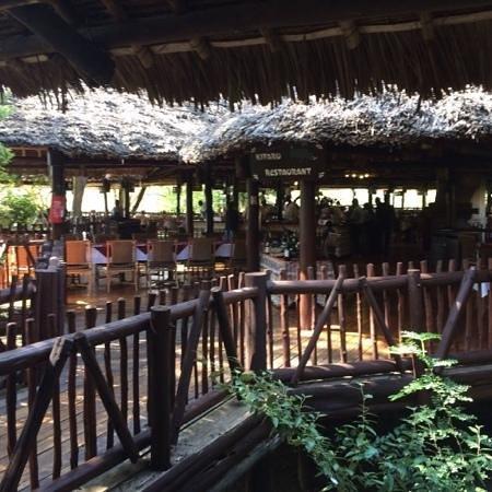 Mara Simba Lodge : bar and dining area