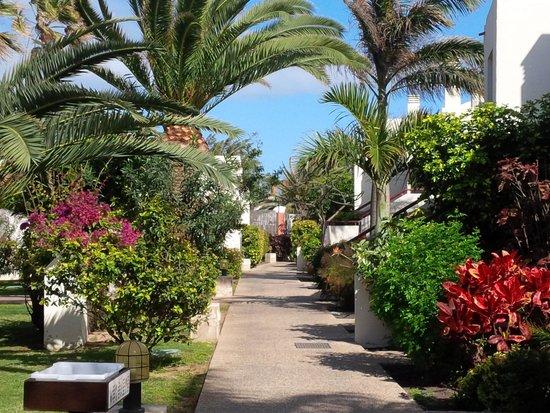 Suite Hotel Atlantis Fuerteventura Resort: i curati giardini