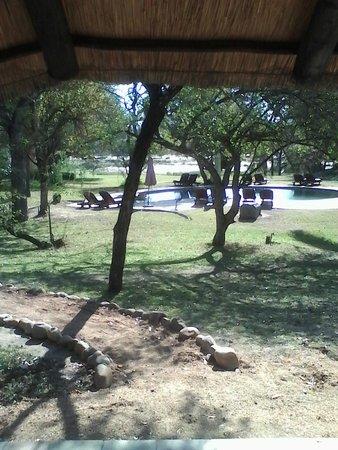 Inyati Game Lodge: Das Gelände vor dem Chalet mit Pool