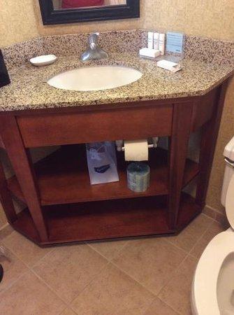 Hampton Inn St. Louis/Westport: bathroom