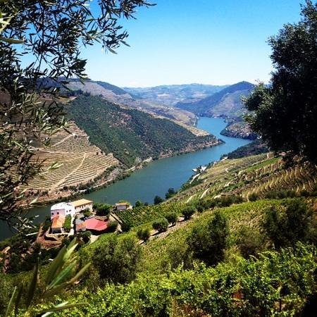 Quinta de Santo Antonio: view of the quinta from hike in the vineyards