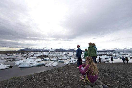 Jokulsarlon Lagoon : My kids loved seal watching!