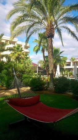 Protur Biomar Gran Hotel & Spa : Hammock