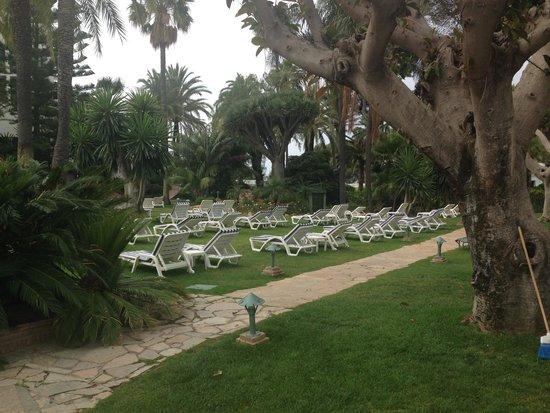 Los Monteros Spa & Golf Resort GL : plenty of sunbeds on grass area