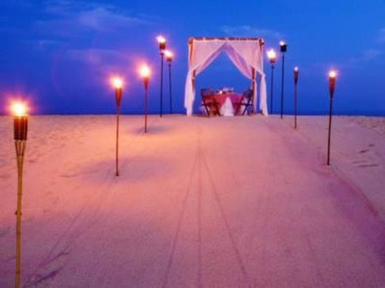 Paradisus Los Cabos: Romantic dinner