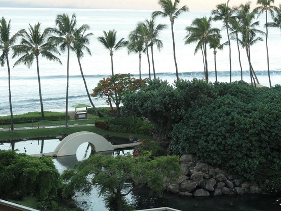 Hyatt Regency Maui Resort and Spa: View from our room