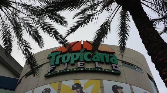 Tropicana Field : Arrival