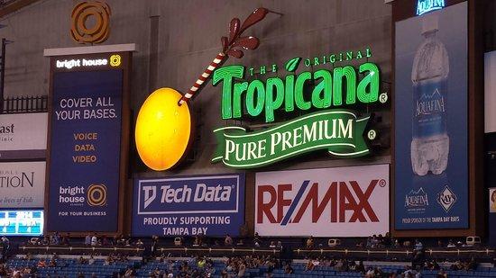 Tropicana Field : Inside!