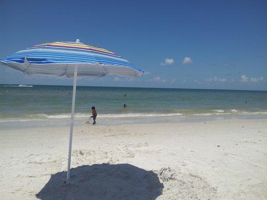 Royal North Beach: clean beach