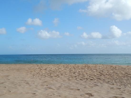 Sandals Regency La Toc: paradise....
