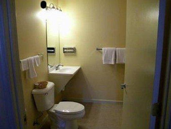 Kalamazoo Knights Inn: Bathroom