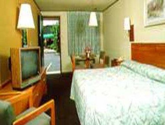 Knights Inn - Scranton/Wilkes-Barre/Pittston: Guest Room