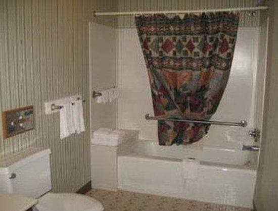 Knights Inn Emporia: Guest Bath Room
