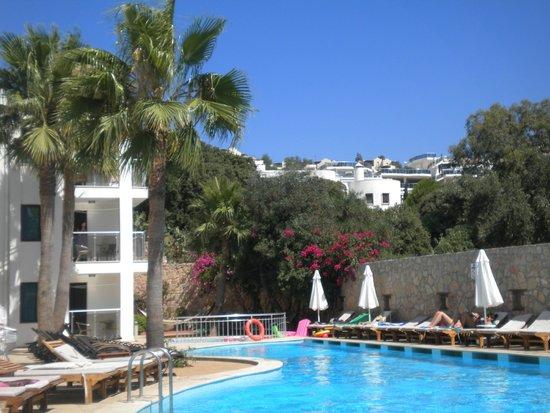 Queen Resort Hotel: pool area/view
