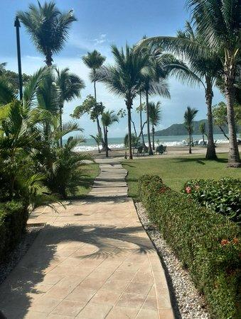 Barcelo Tambor Beach: Sendero a la playa