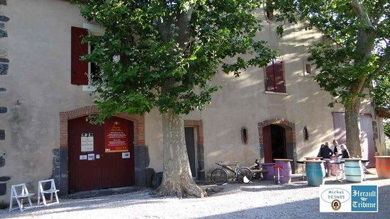 Domaine de Saint Pierre : DOMAINE SAINT PIERRE VIAS PLAGE