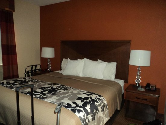 Sleep Inn - Long Island City : Cama king size muito confortável.