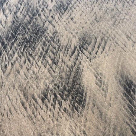 The Resort at Isla Palenque: sand thatblooks like snakeskin