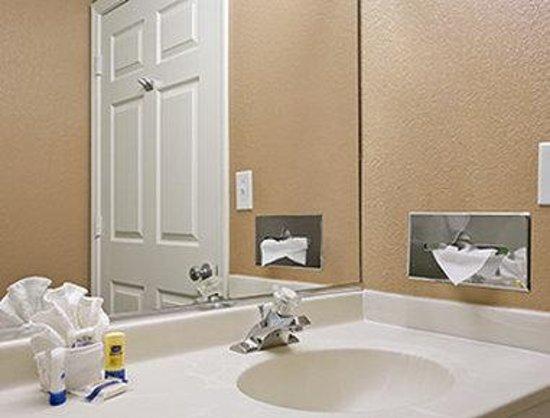 Microtel Inn & Suites by Wyndham Mineral Wells/Parkersburg: Bathroom