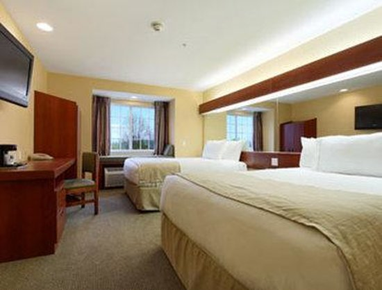 Microtel Inn & Suites by Wyndham Rogers : Queen / Double Bed Room