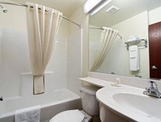 Microtel Inn & Suites by Wyndham Gassaway/Sutton: Bathroom