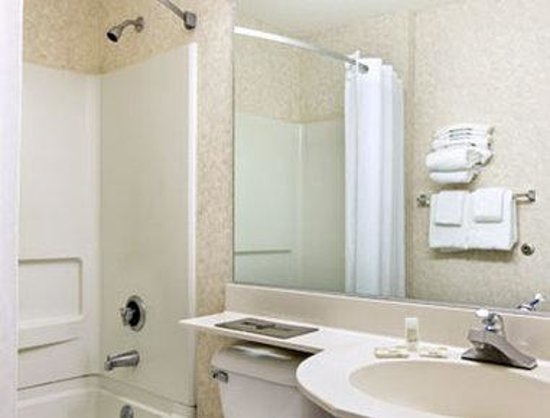 Microtel Inn & Suites by Wyndham Bowling Green: Bathroom