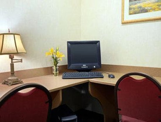Microtel Inn & Suites by Wyndham San Antonio Airport North: Business Center