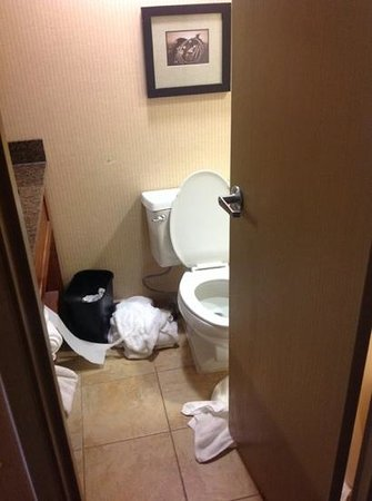 Embassy Suites by Hilton Austin - Central: tiny bathroom