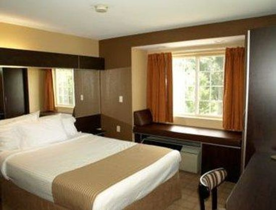 Microtel Inn & Suites by Wyndham Scott Lafayette: Standard One Queen Bed Room