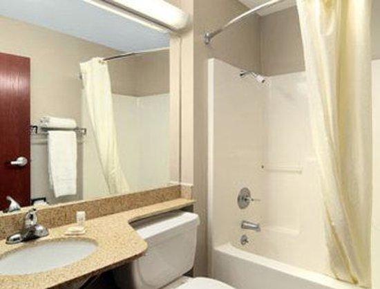 Microtel Inn & Suites by Wyndham Scott Lafayette: Bathroom