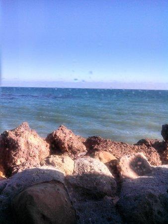 Dukes Malibu: The ocean view