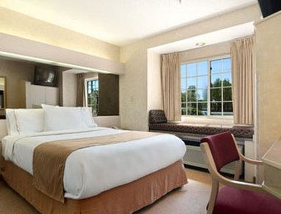 Microtel Inn & Suites by Wyndham Decatur: Guest Room with One Bed