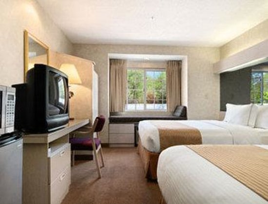 Microtel Inn & Suites by Wyndham Decatur: Standard Double Double