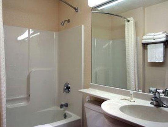 Microtel Inn & Suites by Wyndham Tomah: Bathroom
