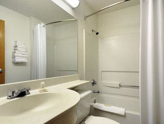 Microtel Inn & Suites by Wyndham Arlington/dallas Area: Bathroom