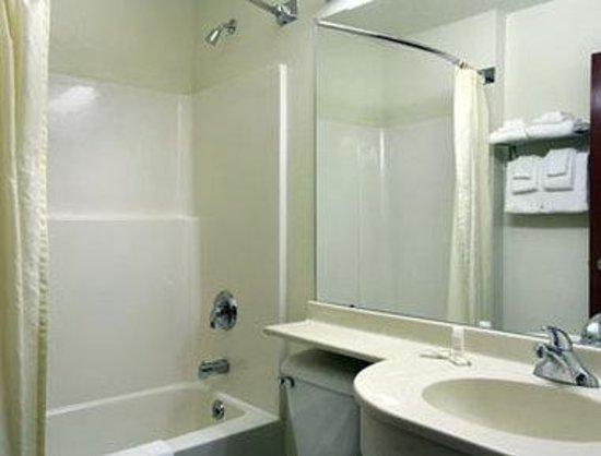 Microtel Inn & Suites by Wyndham Rice Lake: Bathroom