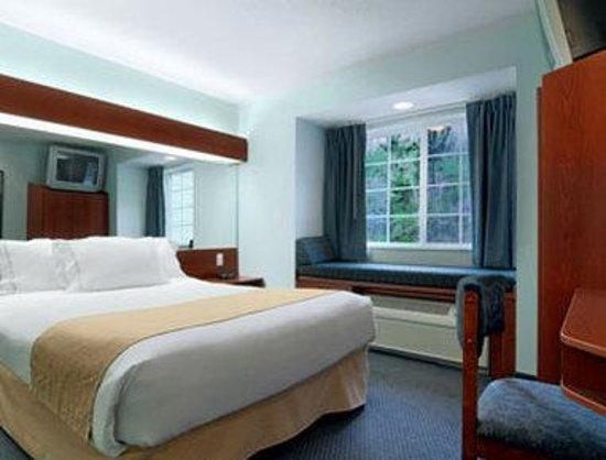 Microtel Inn & Suites by Wyndham Gardendale: Standard Queen Room