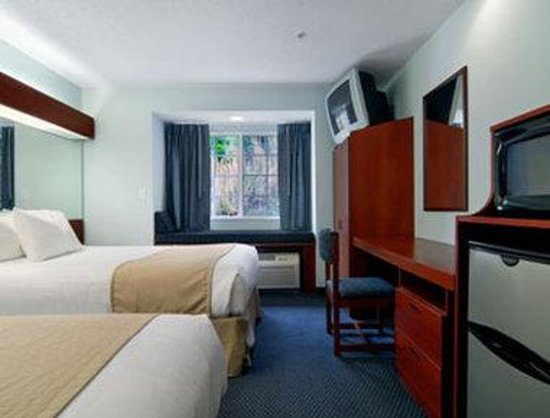 Microtel Inn & Suites by Wyndham Gardendale : Standard Double Room