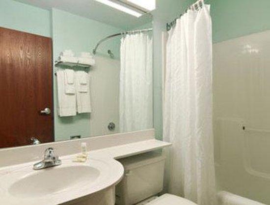 Microtel Inn & Suites by Wyndham Gardendale: Bathroom