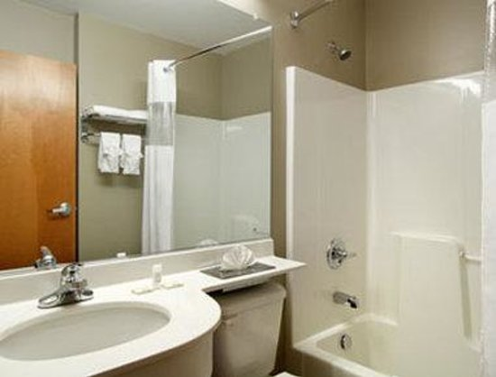 Microtel Inn & Suites by Wyndham Hazelton/Bruceton Mills: Bathroom