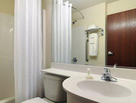 Microtel Inn & Suites by Wyndham Bremen: Bathroom