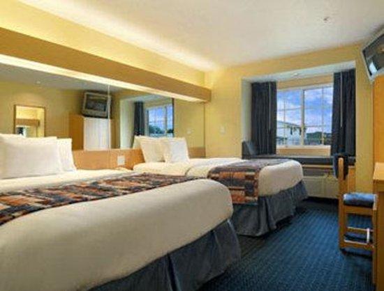 Microtel Inn & Suites by Wyndham Albertville: Standard Double Room