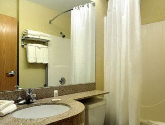 Microtel Inn & Suites by Wyndham Albertville: Bathroom