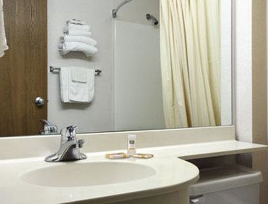 Microtel Inn & Suites by Wyndham Joplin : Bathroom