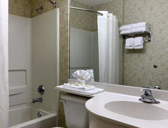 Microtel Inn & Suites by Wyndham Franklin : Bathroom