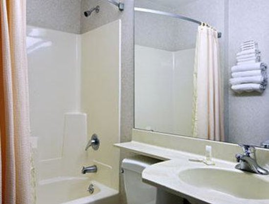 Microtel Inn by Wyndham Onalaska/La Crosse: Bathroom
