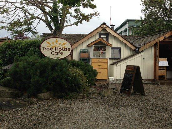 Tree-House Cafe: Tree House!