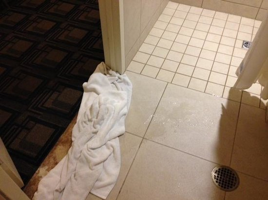 Sheraton New York Times Square Hotel : WATER FROM SHOWER GOES TO CARPET